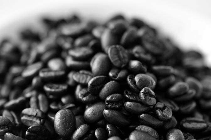 Coffee growers fight bug assault